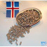 Quality Iceland Sea Cucumber Nutrition Capsules  (Cucumara frondosa) for sale
