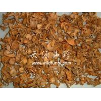 China Dried  Chanterelles(Cantharellus cibarius) on sale