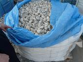 Quality Lantern Packing and Loading Packing and Loading for sale