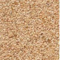 Quality Nuts and kernels White sesame seeds for sale