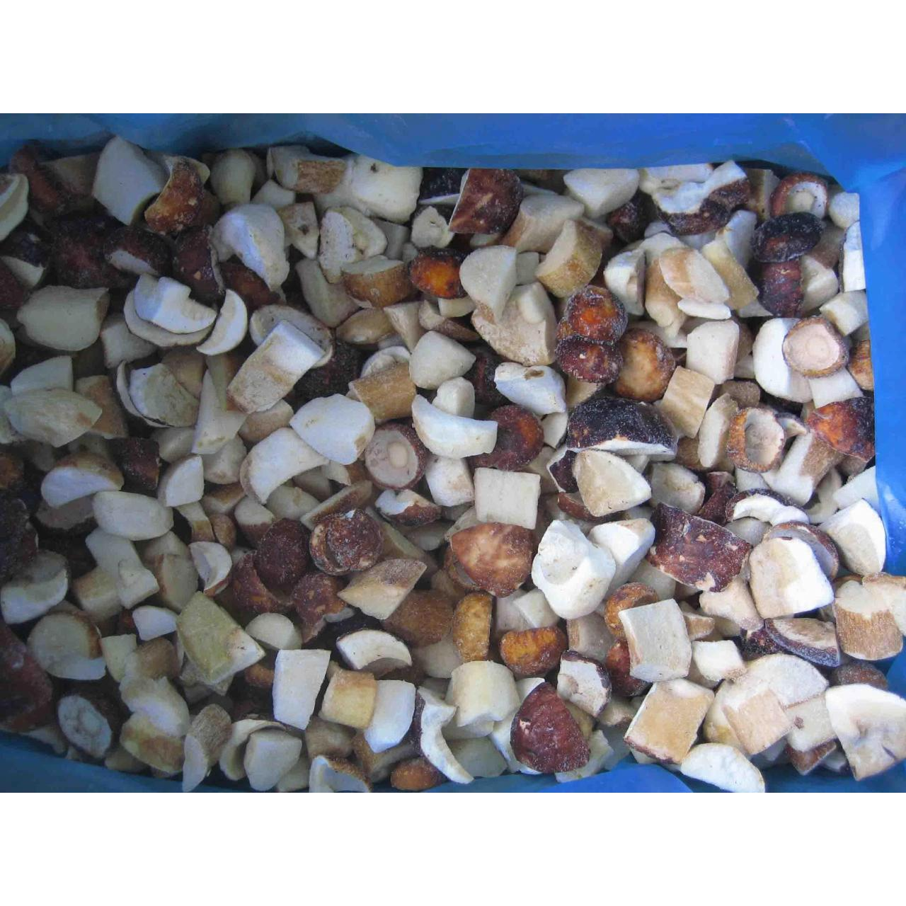 Quality froenboletusedulis(cubes) for sale