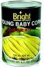 Quality YOUNG BABY CORN IN BRINE for sale