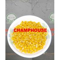 Quality Sweet Corn for sale