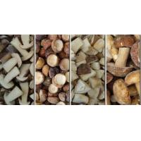 Buy cheap IQF Mushrooms Frozen Boletus Edulis from wholesalers