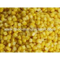 Quality Freeze Dried Vegetables Freeze Dried Sweet Corn Kernel for sale