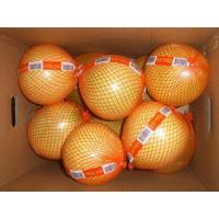 Quality red Pummelo,Pummelo,red Pummelo fruit,red Pummelo fresh for sale