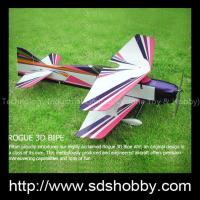 Quality ROGUE 3D BIPE Mini RC Toy Elctric Power Plane for sale