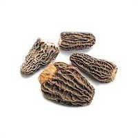 Quality Dried Morel Mushrooms for sale