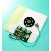 Quality Recording Card Module for sale