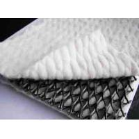 Quality Three-dimensional Composite Drainage Network for sale