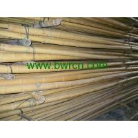 Buy bamboo poles at wholesale prices