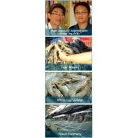 Quality Prawn Culture for sale