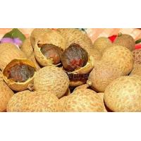 Good supply of green food storage dry longan system-level