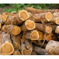 China Round Teak Log on sale