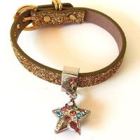 Quality Gold Twinkle Collar with Multi Colored Star for sale
