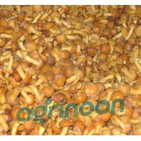 Buy cheap Frozen Nameko Mushroom from wholesalers