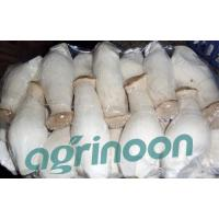 Buy cheap Fresh King Oyster Mushroom from wholesalers