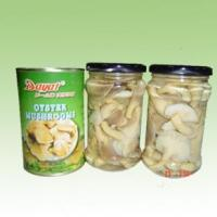 Edible Mushrooms Product Name:Oyster Mushroom