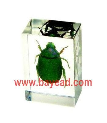 Buy Paperweights at wholesale prices