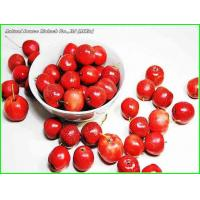 Quality Hawthorn Series Hawthorn Extract for sale