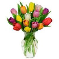 Quality Rainbow Tulip Bouquet - 15 Stems for sale