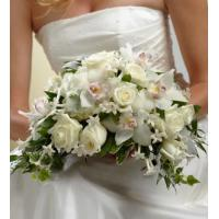 Buy cheap Wedding Party - Floral W9-4622 from Wholesalers