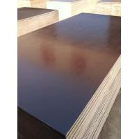 Quality Finger Jointed core Film faced plywood for sale