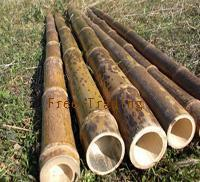 Quality Mottled Bamboo for sale