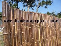 Quality Black Bamboo for sale