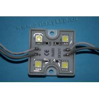 Buy cheap LED Modules LED Module 5050-4smd DC 12V Super Bright Waterproof Coated 20PCS sequence-connected from wholesalers