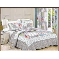 China Hotsale 100 cotton printed patchwork quilt / bedspread / quilt cover on sale