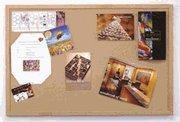 Buy Catalog Dry Erase Boards at wholesale prices