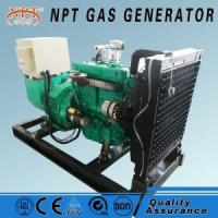 Quality 20KW25KVA Biogas Generator for sale