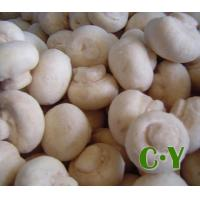 Buy cheap IQF MUSHROOMS Product No.: C.Y.M.01 from Wholesalers