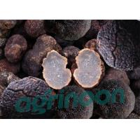 Buy cheap Dried Truffle from Wholesalers