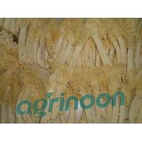 Quality Dried Long Net Stinkhorn for sale