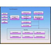 Quality Project Management for sale