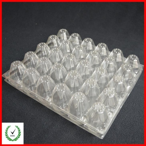 Buy 24 Cells Egg Tray egg trays for sale 24 Cells Egg Tray at wholesale prices