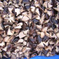 Quality Shiitake in brine in drum for sale