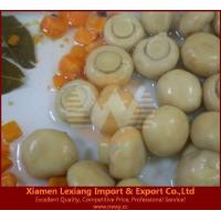 Buy cheap canned edible fungus Product name:canned whole mushroom marinated from wholesalers