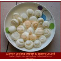 Buy cheap canned edible fungus Product name:canned mushroom whole in SO2 from wholesalers