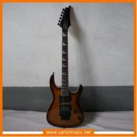 Guitar and Bass EDT001 Electric Guitar