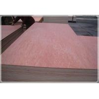 Buy cheap Bintangor Plywood from wholesalers