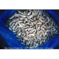 Quality IQF Frozen Mushrooms IQF oyster mushroom for sale