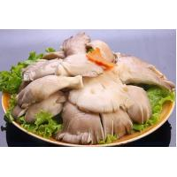 Quality Fresh foods IQF Oyster Mushroom for sale