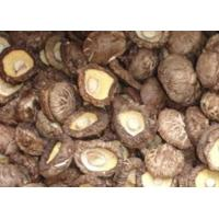 Buy cheap Dehydrated Shiitake Mushrooms from Wholesalers