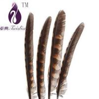 Quality chicken feather trims,pheasant feather ribbons/fringes for cloth accesory for sale