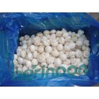 Buy cheap Frozen Champignon Mushroom from wholesalers