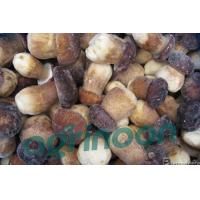 Buy cheap Frozen Porcini Mushrooms from wholesalers