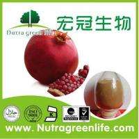 China Pomegranate Hull Extract on sale